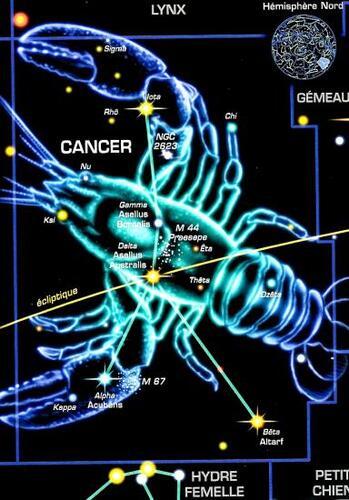 Cancer (17 juillet - 17 aout)