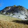 Sortie du Bois de las Artigue, sous les falaises de l'Artigue d'Aneü