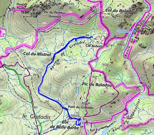 Estérel : les nénuphars du lac d'Aubert