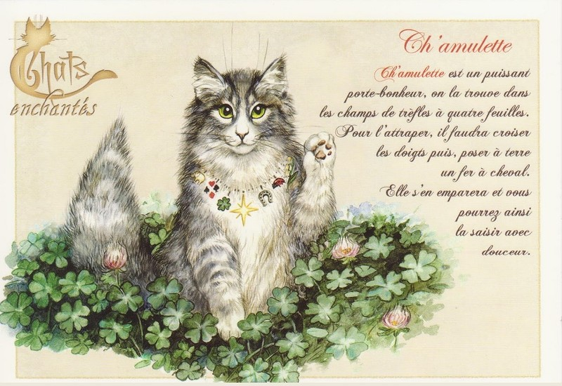 chats enchantés