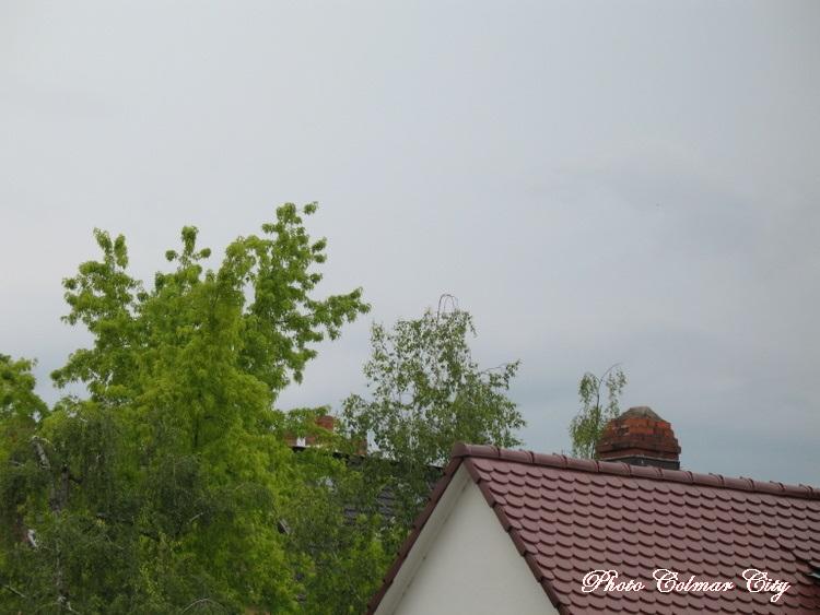 Ciel d'Alsace 165