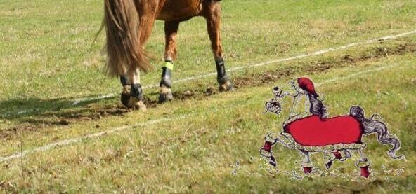 Noël et la course aux cadeaux!