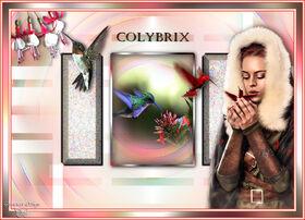 * Colybrix *