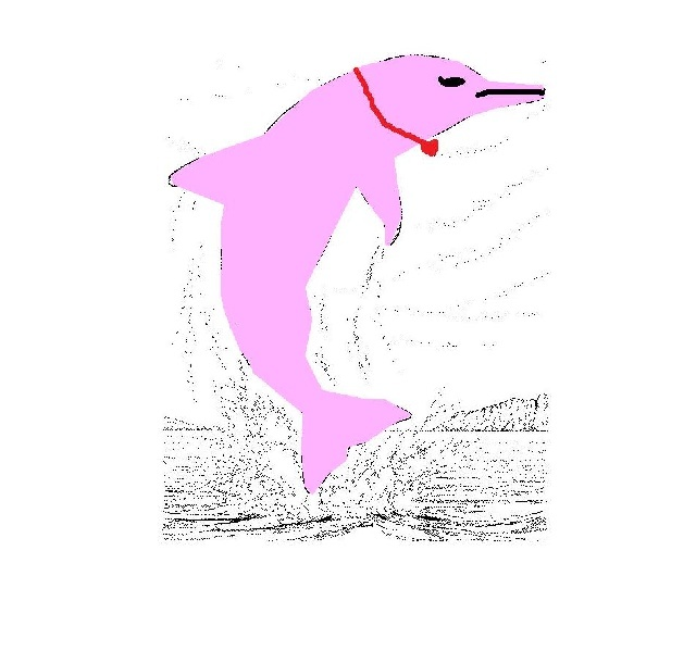 dauphin de sophie-la-star