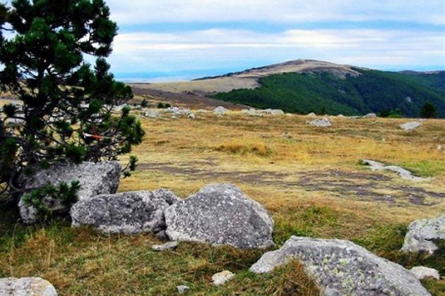 Mont Aigoual à Valleraugues