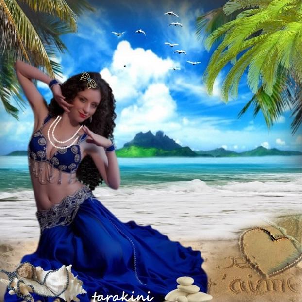 plage et coquillages