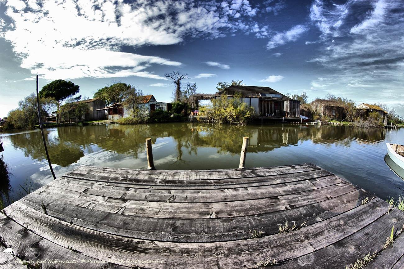 Le long du canal...