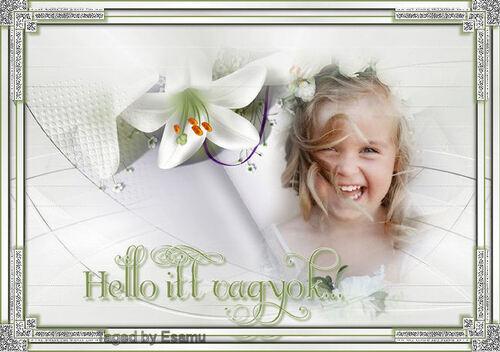 Hello Itt vagyok