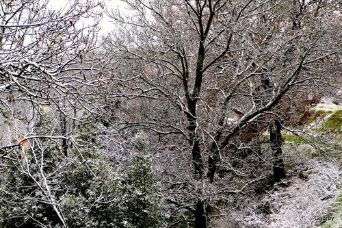 Vieille-Toulouse: la neige!
