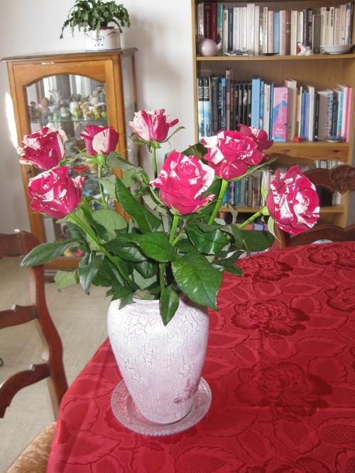 La rose circus
