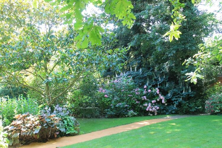 Le jardin des dentelles