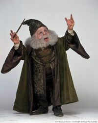 """Un anniversaire """"Harry Potter"""" (3ème partie)"""