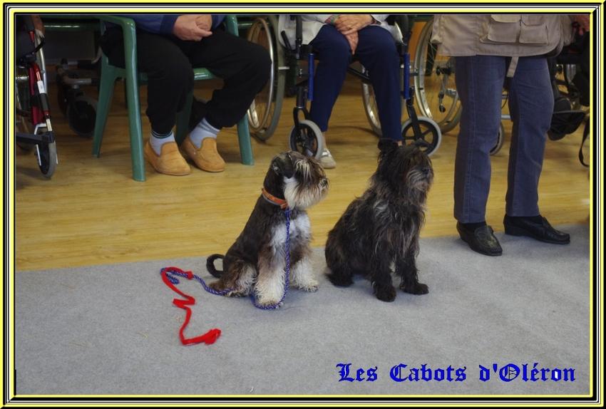 Visite à la maison de retraite d'Etaules mercredi 12 novembre 2014