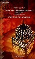 Chronique Une nuit dans le désert de Penny Jordan et Captive de l'amour de Michelle Reid