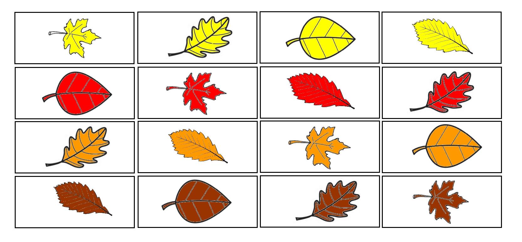 Fiche en kit : arbres et feuilles d\'automne - Maitresse Myriam