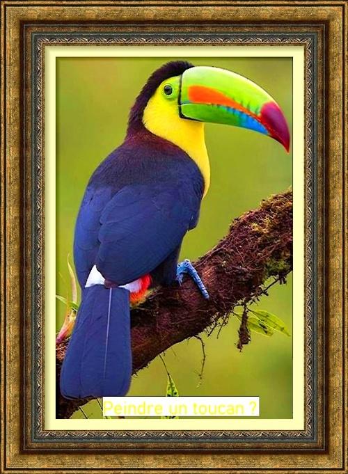 Dessin et peinture - vidéo 2976 : Comment peindre un toucan ? - pastel sec et autres techniques.