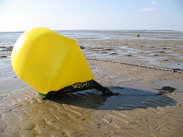 marée basse à ronce les bains