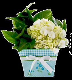 Tubes bouquets de Fleurs