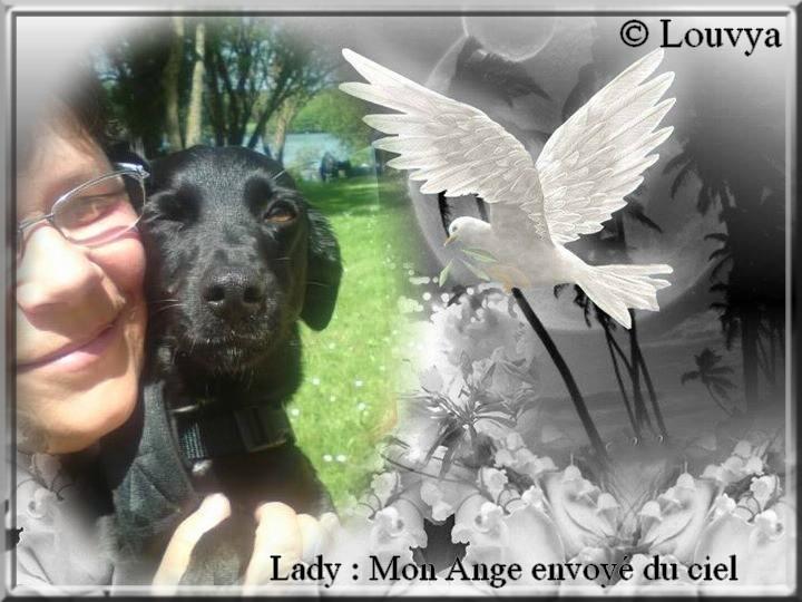 Lady, mon Ange envoyé du ciel