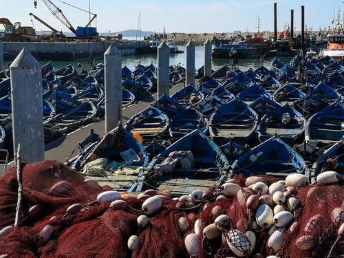 El Jadida, son port, sa criée