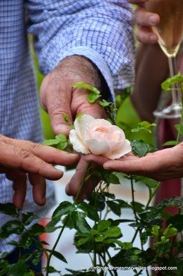 La Fête à la Roseraie 2014 vue par les autres bloggeurs
