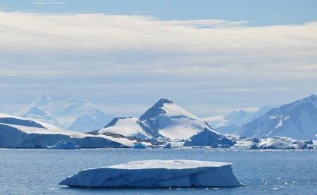 L'Antarctique est envahi par la végétation