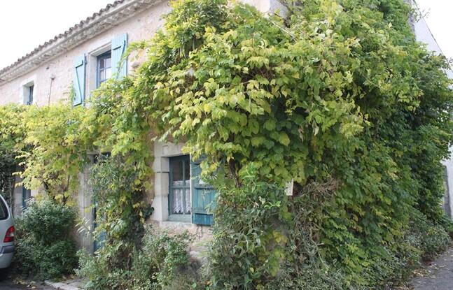 2 Mornac sur Seudre (19)