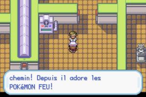 Pokémon Vert Feuille #8