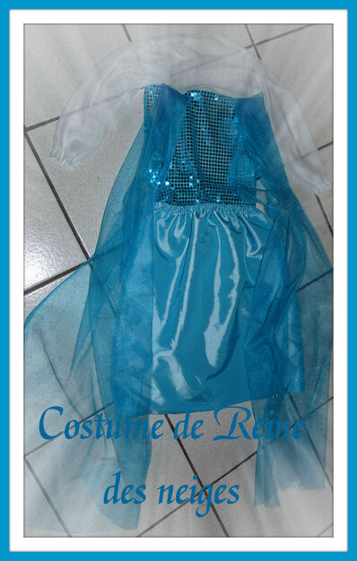 Costume d'Elsa la Reine des Neiges