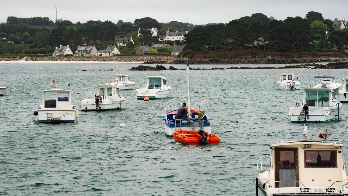 Finistère 2019 : Plougerneau côté  mer