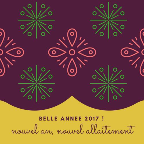 A Lait'coute voeux 2017 assemblée générale rencontre allaitement