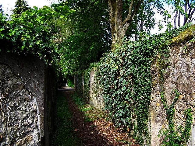 Ancy sur Moselle 3 mp1357 25 01 2011