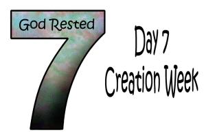 7_Day 7 Semaine de la création