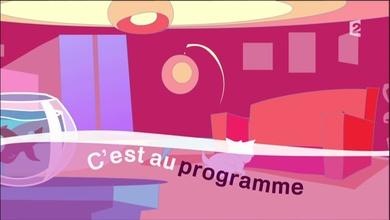 02 novembre 2016 / C'EST AU PROGRAMME, FRANCE 2