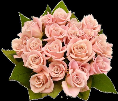 Fleurs bouquets  1