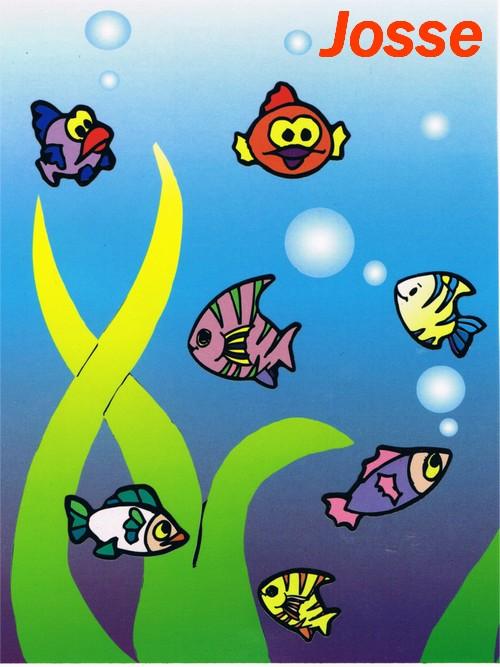 """Résultat du concours """"les poissons"""""""