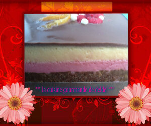 bavarois framboise,peche,miroir chocolat