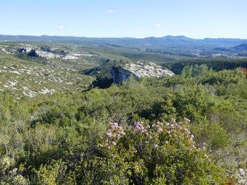On découvre le sommet de la Roche Redonne