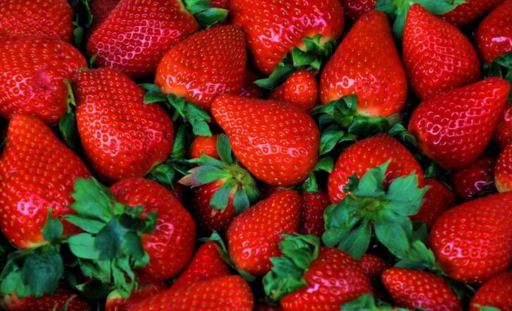 Médecine:  Quels sont les aliments les plus riches en fibres ?