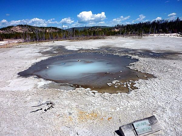 Jour 11 Yellowstone Norris Pearl Geyser-copie-1