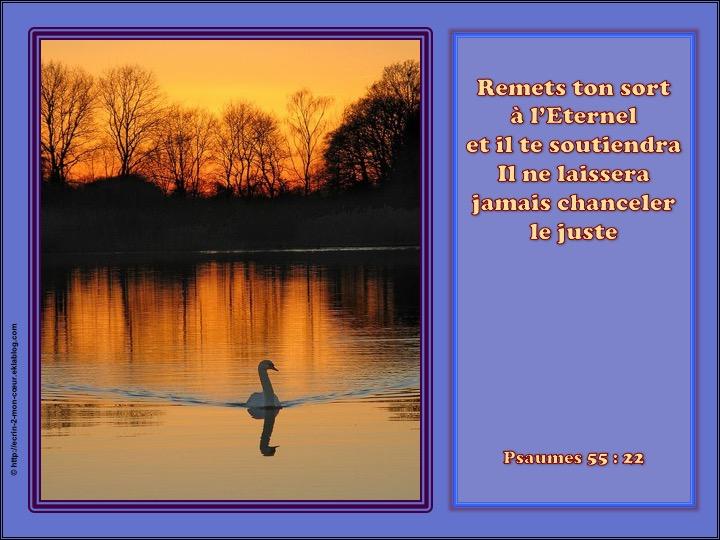 Remets ton sort à l'Eternel et il te soutiendra - Psaumes 55 : 22