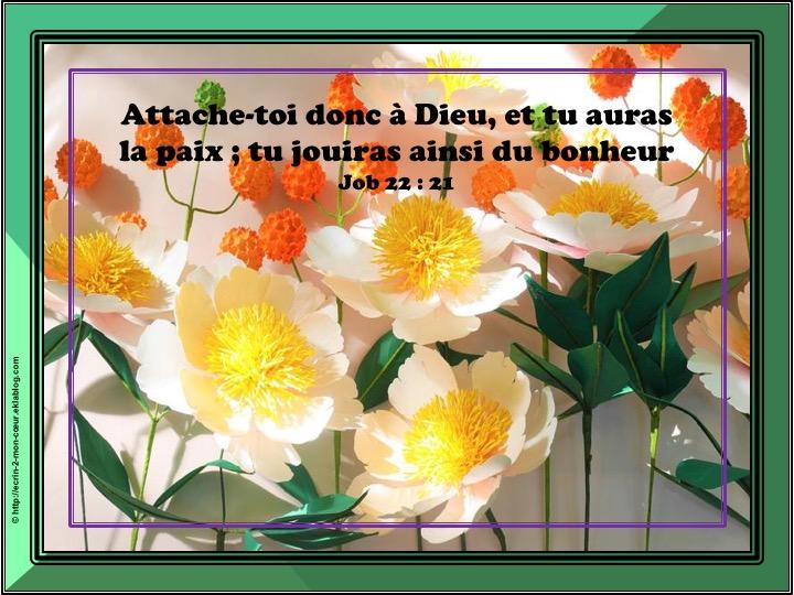 Attache-toi donc à Dieu - Job 22 : 21