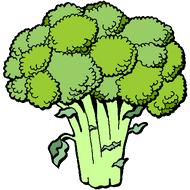 Légume diurétique