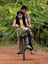 Muksin - film de Yasmin Ahmad (2008)