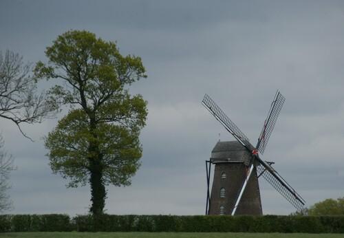 Sur la route des Moulins dans les Flandres (Mont Cassel)
