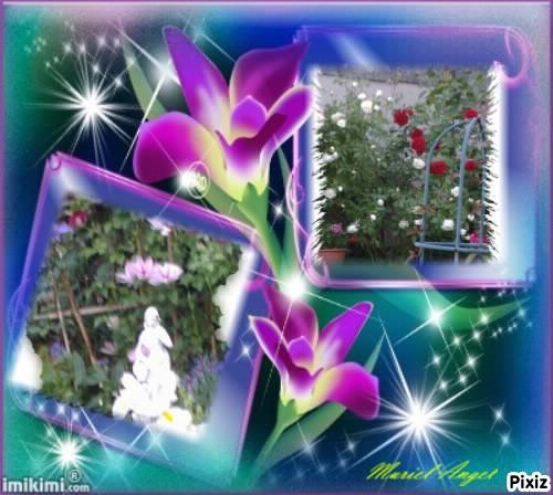 Creations-Pixiz-Jardin-2013--5--Muriel-Angel.jpg