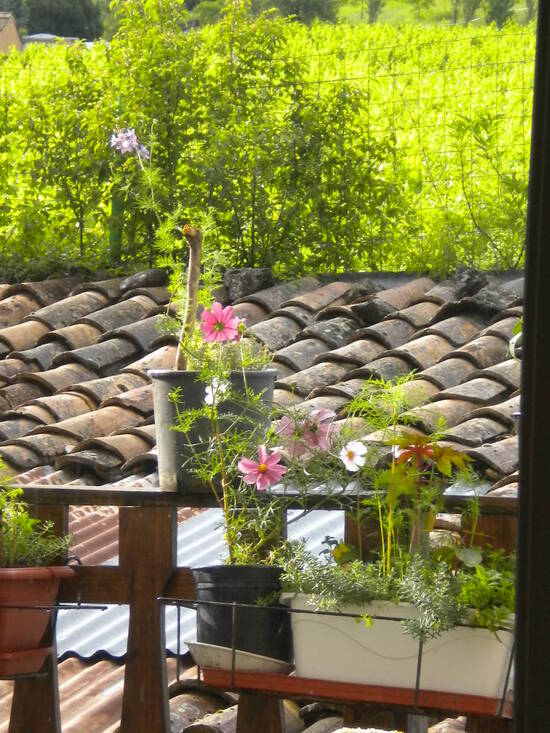 Un petit tour sur la terrasse