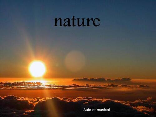 PPS NATURE