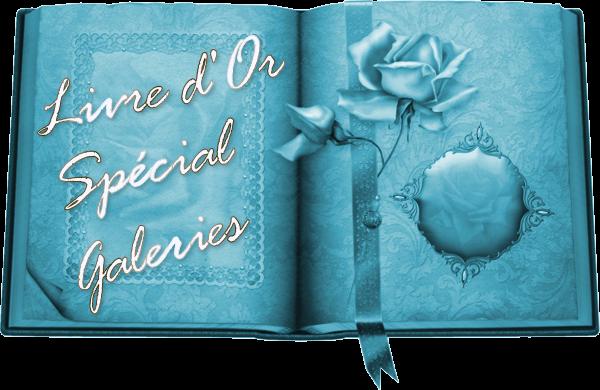 Livre d'Or spécial Galeries