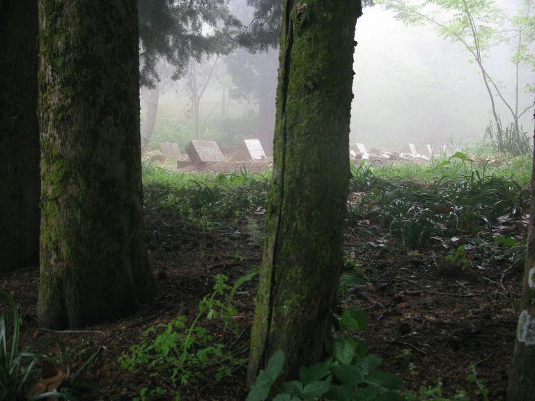 Le cimetière du monastère de Tibéhirine, au printemps 2016.